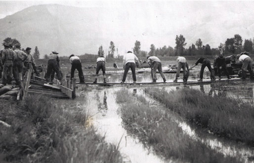 Sandbagging to shore up the dikes during flood, 1948