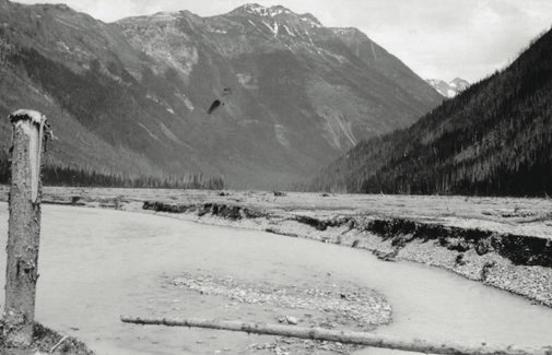 Kinbasket Lake, 1954