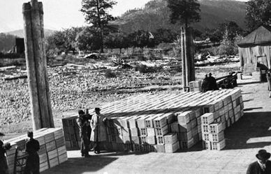 Fruit boxes stacked and ready for shipping on the Renata wharf, circa 1950s.